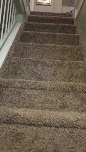 Installed Carpeting On Stairs With Stringers In Ventnor
