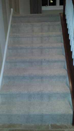 Installed Thick Plush Carpeting On Stairs And Hallway In